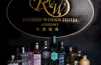 Gin Selection Raheen Woods Hotel Athenry c3